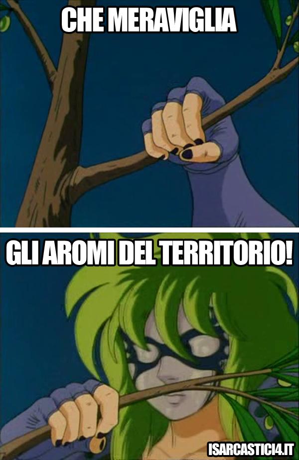 Cavalieri dello zodiaco meme ita - Km zero