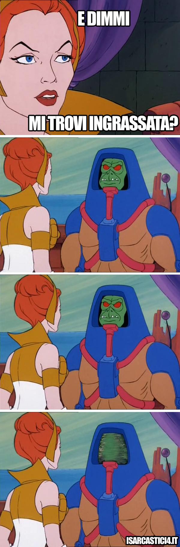 MOTU, Masters Of The Universe meme ita - Mi trovi ingrassata?