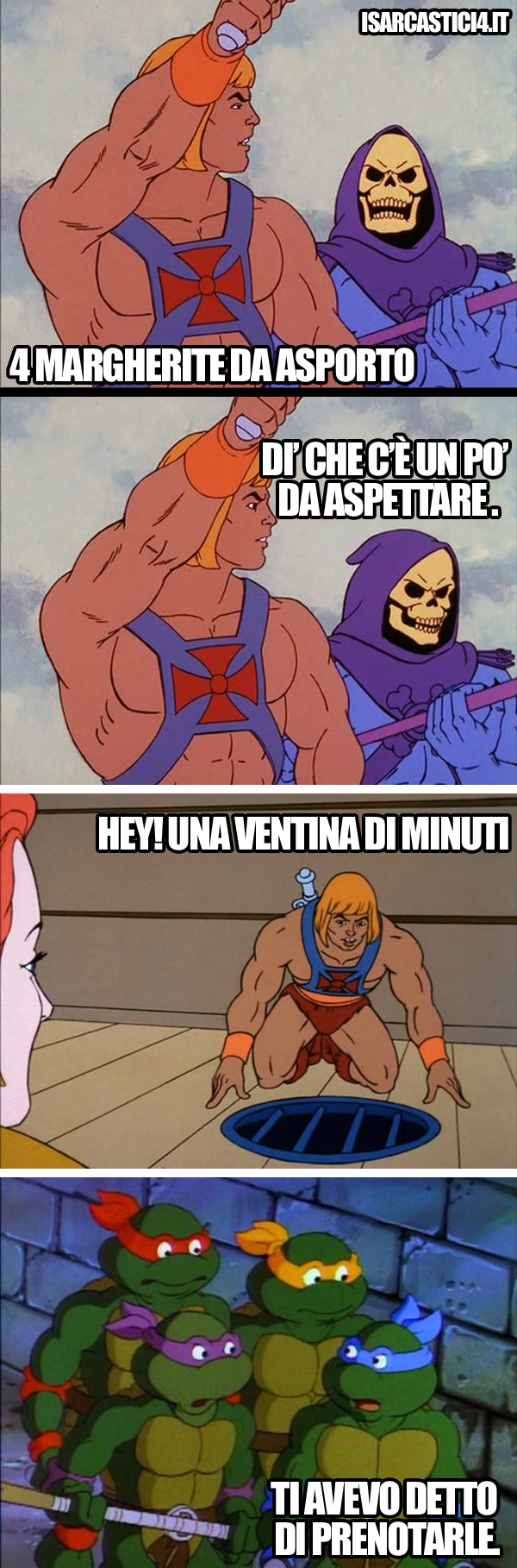MOTU - Masters of the universe e TMNT - Teenage Mutant Ninja Turtles meme