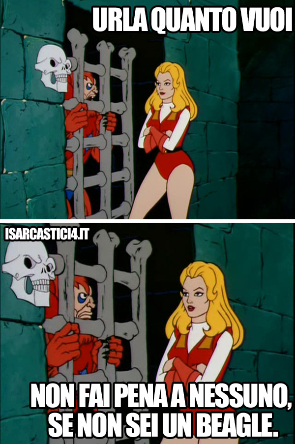 MOTU, Masters Of The Universe meme ita - Carini e coccolosi